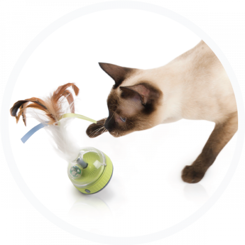 SmartyKat Silly Spinner Electronic Cat Toy